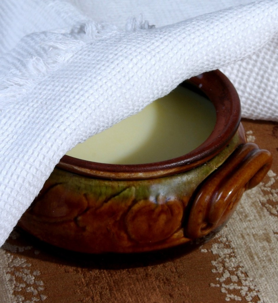 Bulgarian Milk and ferment in traditional earthenware dish
